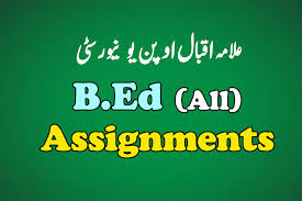 AIOU B.Ed Thesis latest